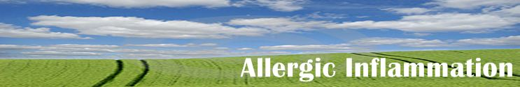 Allergic inflammation info source about allergies and allergic reactions