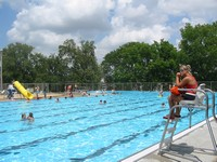 Regular swimming can help or possibly even cure Arthritis!